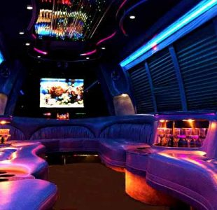 18 Passenger Party Bus Rental New Jersey