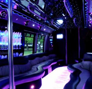 22 People Party Bus Limo New Jersey